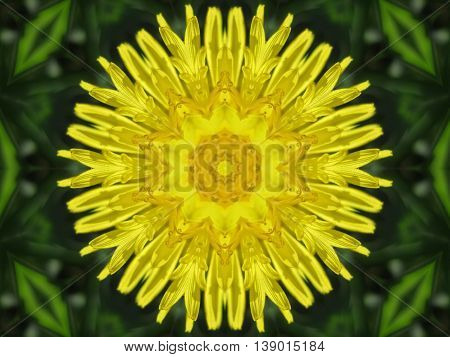 Yellow kaleidoscope flower on the green background