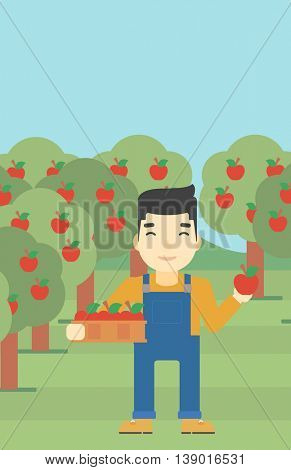 An asian farmer holding a box with apples in one hand and an apple in another on a background of garden with trees. Farmer collecting apples. Vector flat design illustration. Vertical layout.