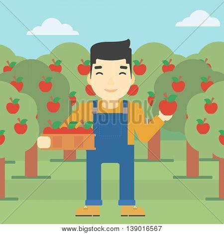 An asian farmer holding a box with apples in one hand and an apple in another on a background of garden with trees. Farmer collecting apples. Vector flat design illustration. Square layout.