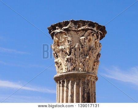 the upper part of a column with a stucco molding in the territory Anthony's term in Carthage