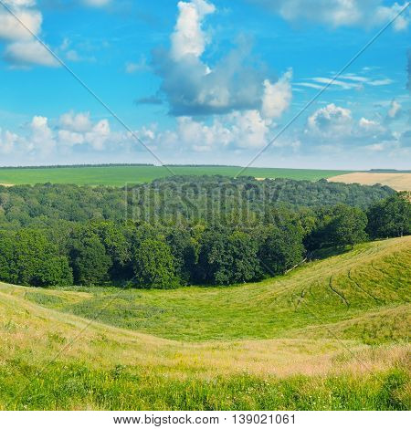 picturesque hills, forest and blue cloudy sky