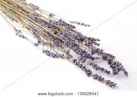 Close up bunch of lavender isolated on white