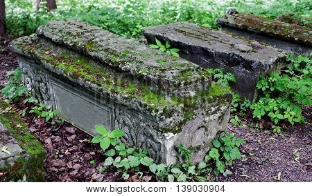Old stone coffins in the woods with dried leaves on the ground selective focus