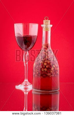 Handmade tincture made from wild strawberries sugar and vodka on a red background close up