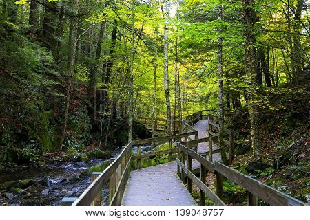 Walkway To Waterfall Near Castle In The Clouds, Moultonborough