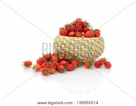juicy ripe wild strawberry isolated on a white background with reflection. horizontal photo.