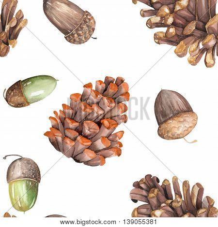 A seamless pattern with a floral ornament of the watercolor forest oak acorns and fir cones on a white background