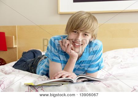 Teenage Boy Writing In Diary In Bedroom