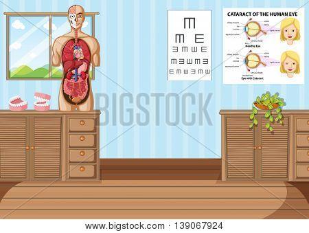 Room with human anatomy model illustration
