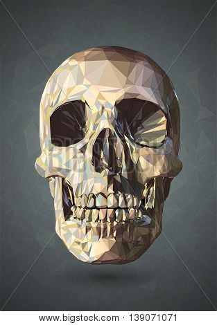 3D Skull low poly vector with graphic wireframe line on gray background