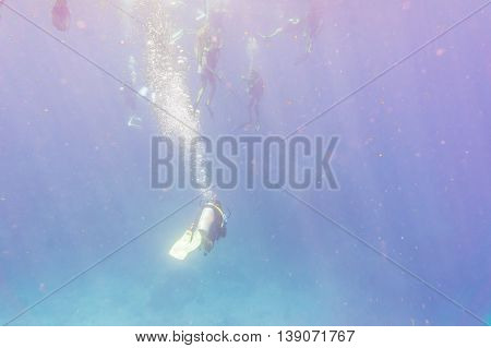 Underwater Shoot Of A Divers Trainnig Openwater