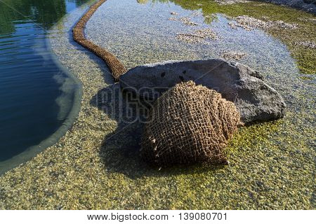 Textile Fabric Net In Natural Swimming Pond For Purifying Plants