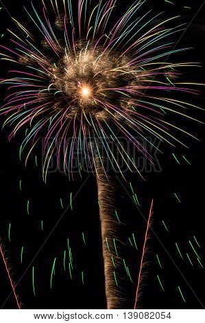 Fireworks blooming overhead in a beautiful display.
