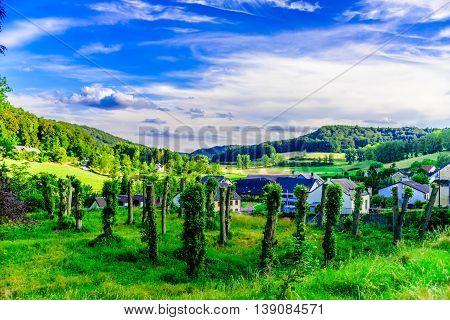 Landscape in Schoenefels in a summer day, Scoenefels, Luxembourg