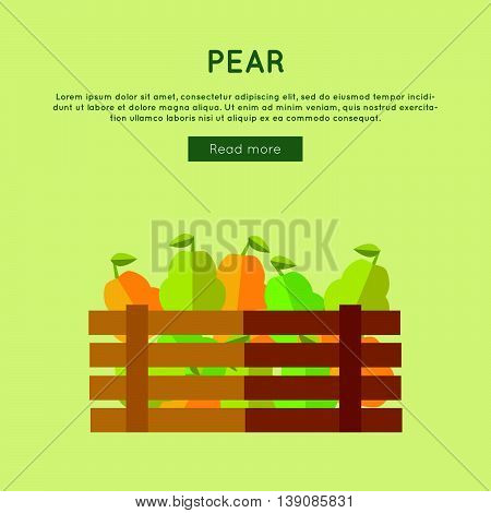Pear vector web banner. Flat design. Illustration of wooden box full of fresh and ripe fruits on color background for grocery shop, farm, agricultural company web page design.