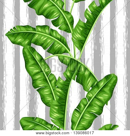 Seamless pattern with banana leaves. Image of decorative tropical foliage.