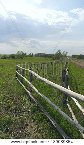 Beautiful rural summer landscape with green field
