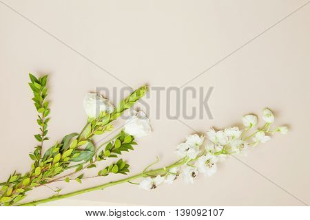 bunch of flowers on a beige background