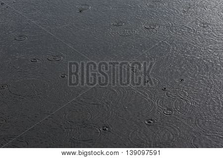 Circles Of Rain