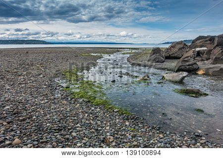 A stream flows across the shore and into the Puget Sound.