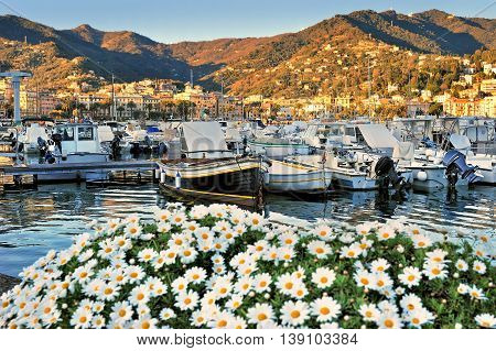 port of Santa Margherita Ligure which is popular touristic destination in summer