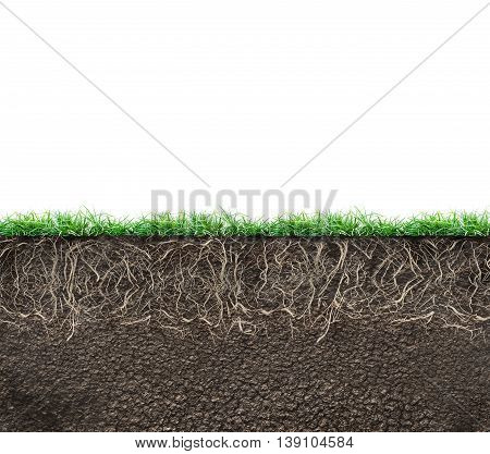soil with roots and grass isolated on white