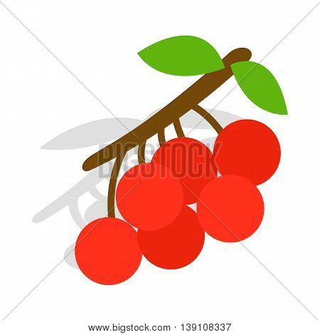 Rowan branch icon in isometric 3d style isolated on white background. Plant symbol