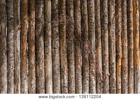 tree log post fence with tree bark