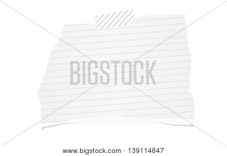 White ripped ruled note paper are stuck with sticky tape on white background.