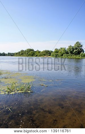 there is a picturesque river not far from the shore through clear water can be seen bottom