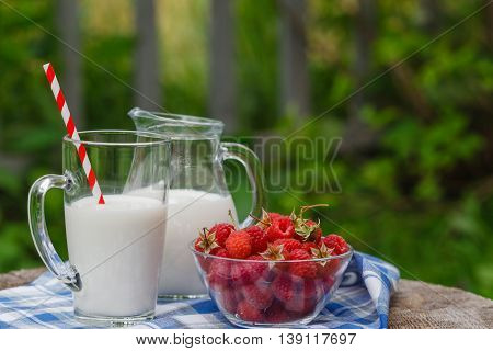 Delicious And Healthy Breakfast In The Garden