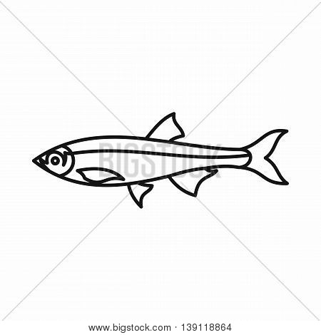 Herring fish icon in outline style on a white background