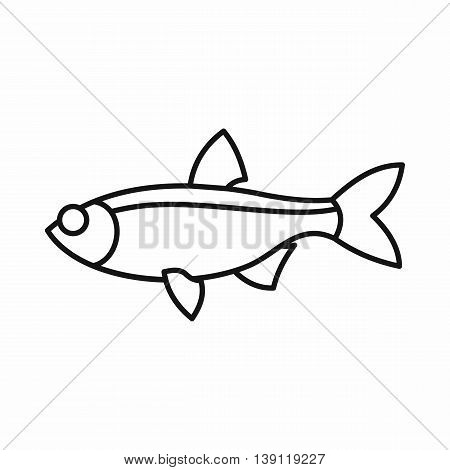 Rudd fish icon in outline style isolated vector illustration