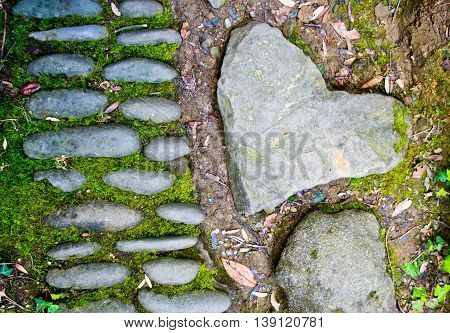heart-shaped stone is forever in the woods on the side of a path formed by old stones covered with moss
