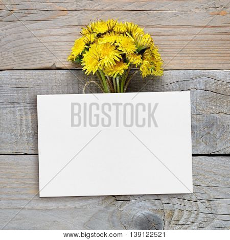 Dandelion flowers and blank postcard on wooden background