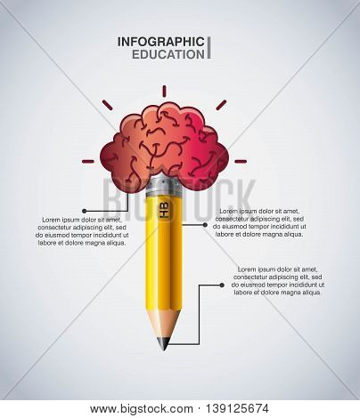 Infographic education concept represented by brain and pencil icon. Colorfull and flat illustration.