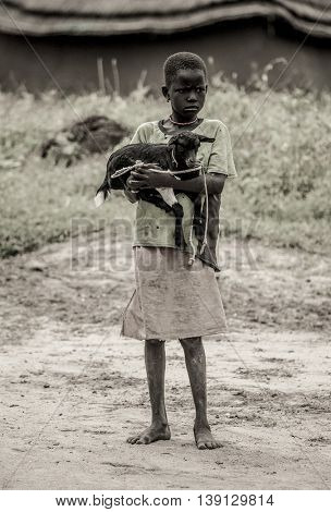 BOR, SOUTH SUDAN-NOVEMBER 2, 2013: An unidentified girl holds her goat in the town of Bor, South Sudan