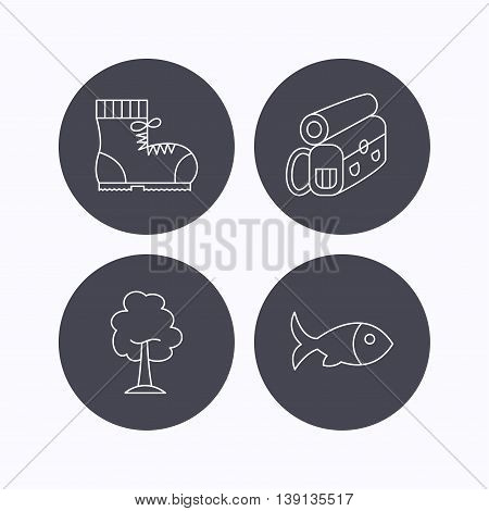 Maple tree, fish and hiking boots. Backpack linear sign. Flat icons in circle buttons on white background. Vector