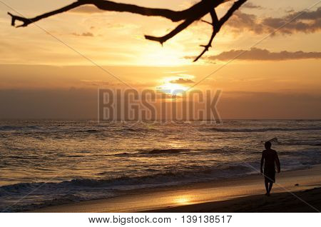Surfer on the beach at sunset alone