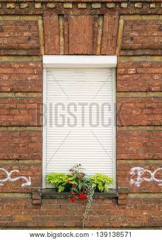 Red brick wall and window with rolling shutters and flowers