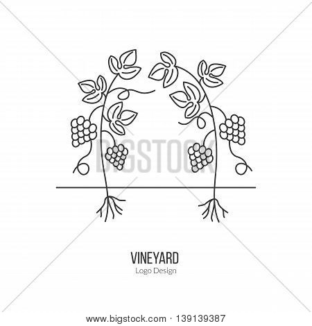 Growing grapes. Single logo in modern thin line style isolated on white background. Outline winery symbol. Simple mono linear pictogram. Stroke raster logotype template.