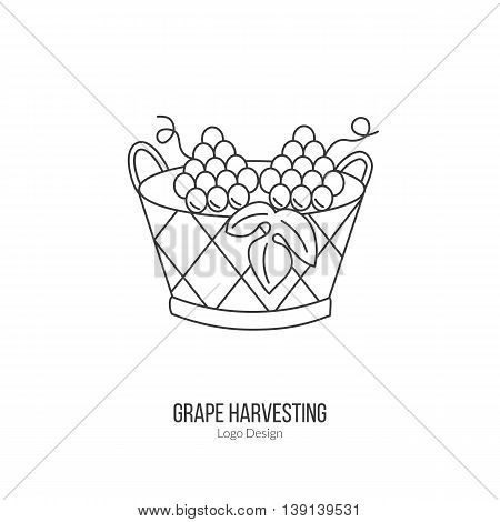 Harvesting basket with grapes. Single logo in modern thin line style isolated on white background. Outline winery symbol. Simple mono linear pictogram. Stroke vector logotype template.