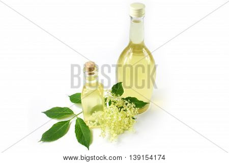 Sambucus nigra elderberry sirup on white background. Two bottle of excellent syrup with flowers and leaves.