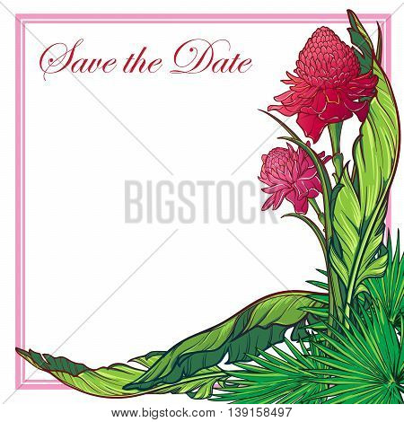 Tropical Floral Frame. Banana and palm tree leaves and Etligera elator flowers. Greeting card, spa flyer or wedding invitation design template. EPS10 vector illustration.