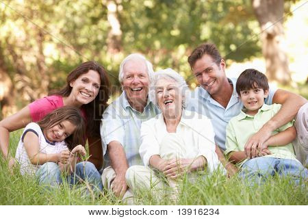 Portrait Of Extended Family Group In Park