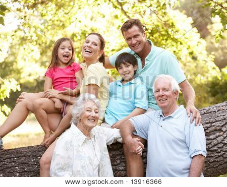 Porträt Großfamilie Gruppe im park