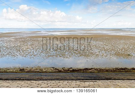 Dutch estuary at the base of an embankment and at low tide on an early morning in the summer season.