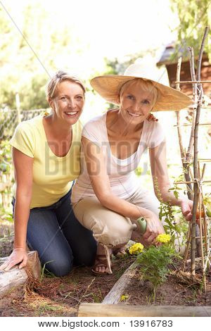 Senior Woman And Adult Daughter Relaxing In Garden