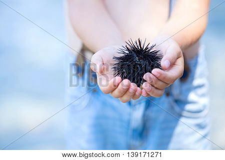Cute Child, Holding Sea Urchin On The Beach