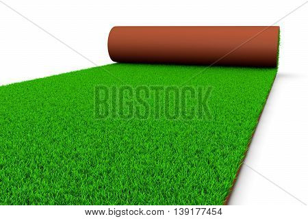 Carpet Of Grass